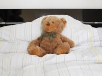 Deutsche Stiftung Schlaf Teddy